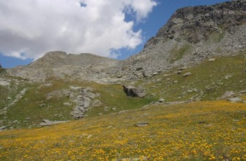 Monte Bettaforca